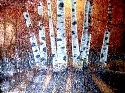 010. White Birch Trees (2007 first painting)